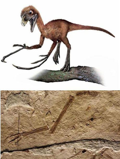 Епидендозавр