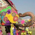 Легендарні фестивалі, які потрібно побачити хоч раз у житті