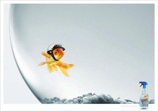Стеклоочиститель Glassex реклама