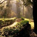 Лучшие парки мира по версии Trip Advisor