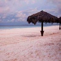 Самые красивые пляжи с розовым песком