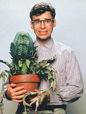 Ботаники, которые выращивают растение аморфофалос