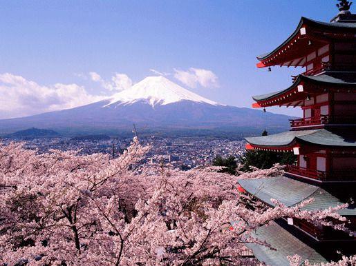 Япония дешевый туризм