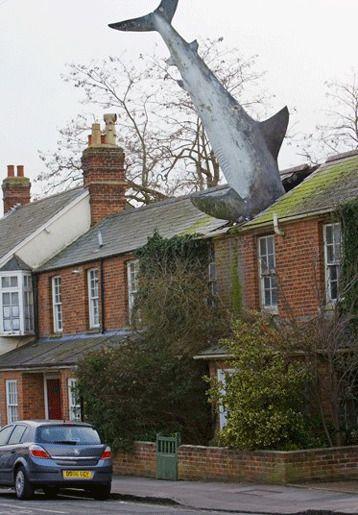 Хедингтонская акула, графство Оксфордшир, Великобритания