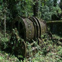 Дарьенский разрыв: самые опасные джунгли на Земле