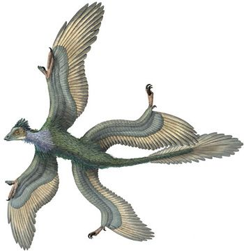 Динозавр-птица