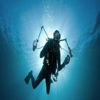 Советы по съемке подводного видео и фото