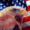 Країни, які найбільше ненавидять Америку