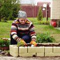 Озелененням дворів половина киян займається самостійно