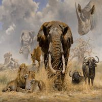 Топ-10 найбільш рідкісних тварин