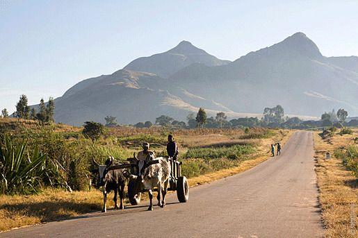 Мадагаскар бедность