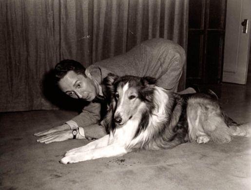 5. Норман Роквелл и его собаки