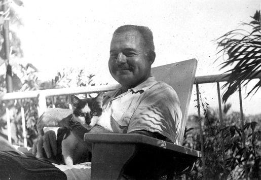 4. Эрнест Хемингуэй и его кошки