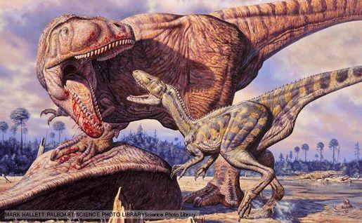Вашингтон, Капиталозавр