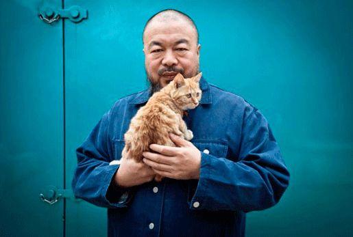 Ай Вэйвэй и его коты