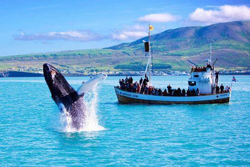 Счастье Исландия